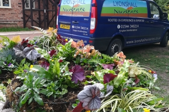 Creating hanging baskets with Lyonshall Nurseries
