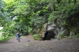 Cave in woodland