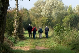 Four ramblers walking away down a country path