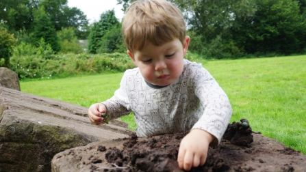 Young child playing with soil