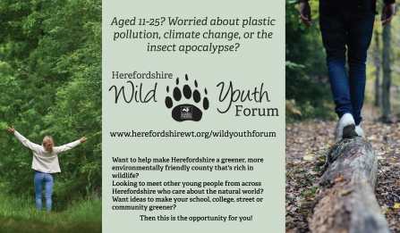 Promotional banner for Herefordshire Wild Youth Forum