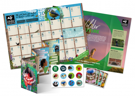 Contents of the 30 Days Wild pack including wall chart, stickers, seeds