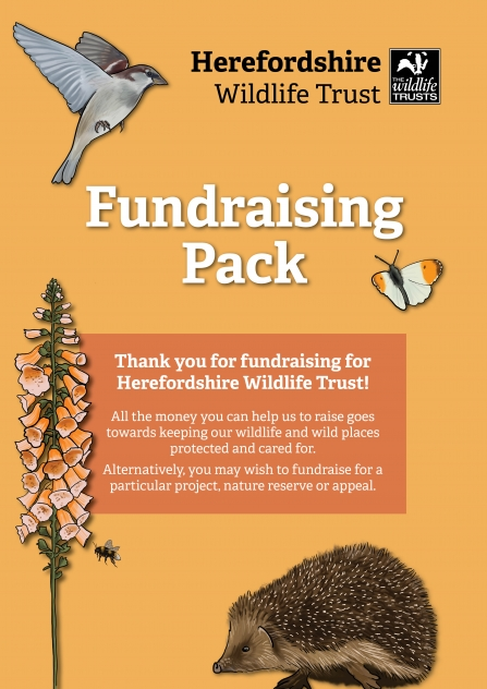 Cover of downloadable fundraising pack