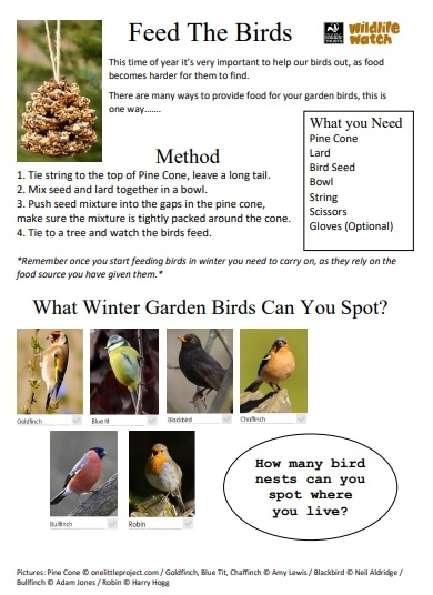 Feed the birds activity sheet